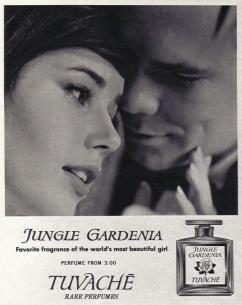colleen_corby_seventeen_apr_1964